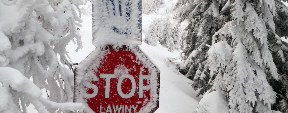 Biały Jar -narty zakazane